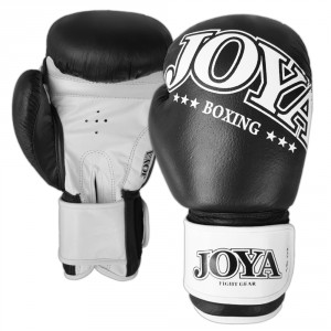 Joya Boxing Gloves New Model Leather White